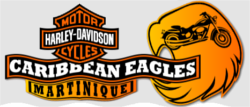 Caribbean Eagles Martinique Logo